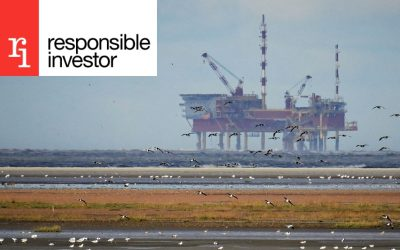 """Dutch campaign group drops Shell climate resolution after """"intensive discussions"""" with big investors"""